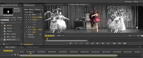 Corso Premiere Ravenna: ecco cosa imparerai durante il corso - screenshot 2